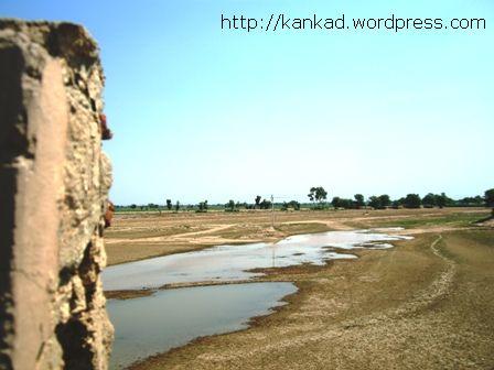 पीलीबंगा-कालीबंगा के बीच पुल से घग्घर नदी का एक दृश्य.