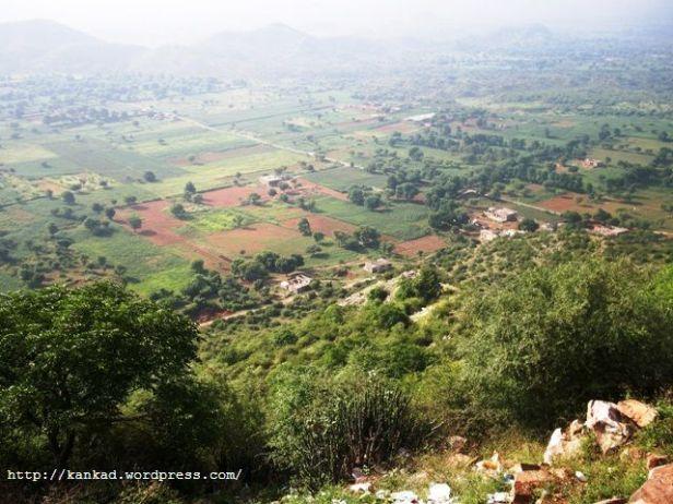 जयपुर के पास दिल्ली सीकर बाइपास पर बिलौची गांव की एक पहाड़ी से लिया गया  चित्र. हरियाली, मानों किसी ने दोनों हाथों से उंडेल दी हो.