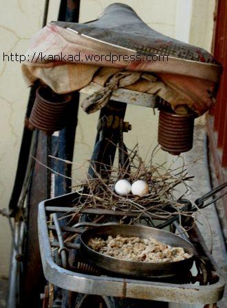 घोंसला और अंडे .. हर दिन कुछ न कुछ रख दिया जाता खाने के लिए .
