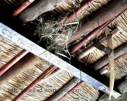 कच्चे मकान की छत की गाडर में चिडी का घोंसला ...