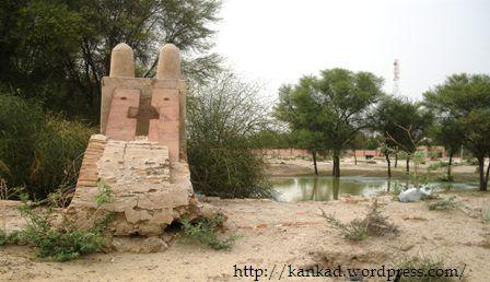 रोजड़ी गांव में पुराना कुआं, जिसका कोई इस्तेमाल नहीं हो रहा.